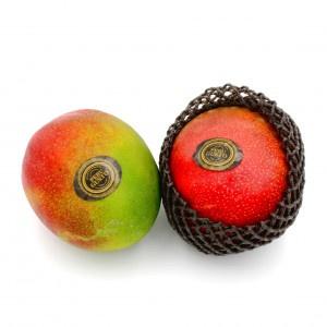 Mango AIR Kent kal.10-12 ,I.Tr 2