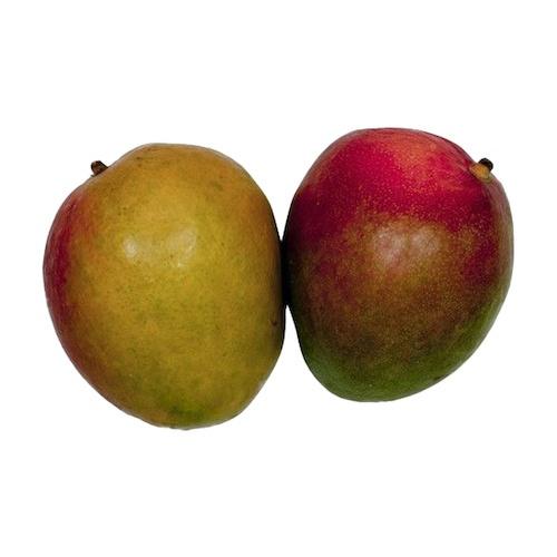 Mango T.Atkins kal.8 ,I.Tr 1