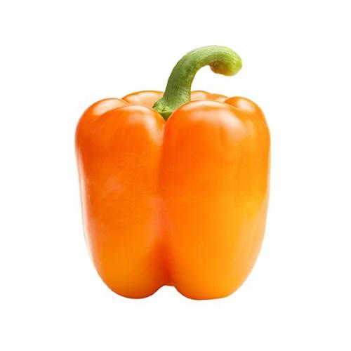 Paprika oranžová kal. GG 1
