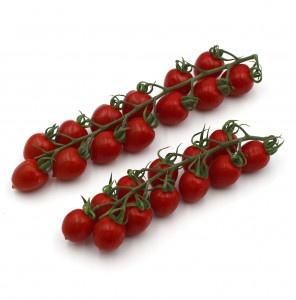 Paradajka Cherry čer. krík STRABENA Maďarsko 6