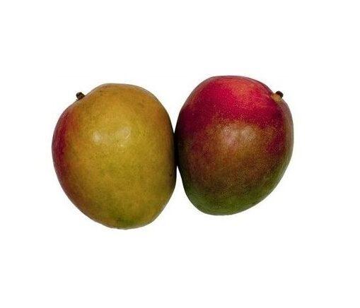 Mango kal.7 ,I.Tr 1
