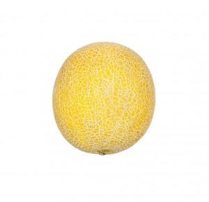 Melón žltý GALIA ks 6