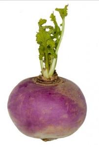 Kvaka turnip ,I.Tr 20