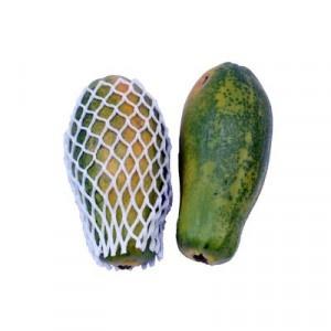 Papaya Formosa kal.4 ,I.Tr 6