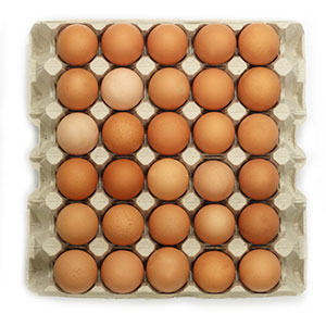 Vajcia tr. A L 30ks kartón 1