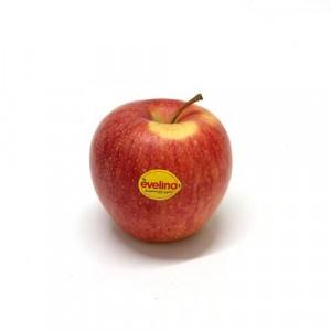 Jablká červené Evelina ukl. kal. 80+ ,I.Tr 2