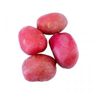 Zemiaky ružové prané 5kg/vrece 8