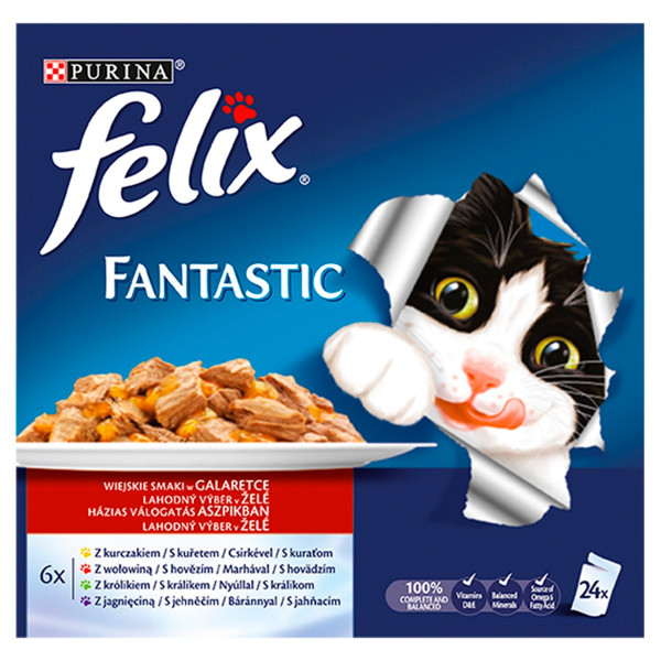 Felix Fantastic lahodný výber v želé 24x100 g 1