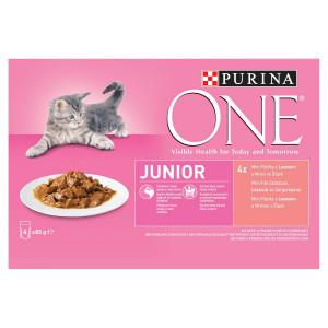 Purina ONE Junior losos s mrkvou 4x85 g 4
