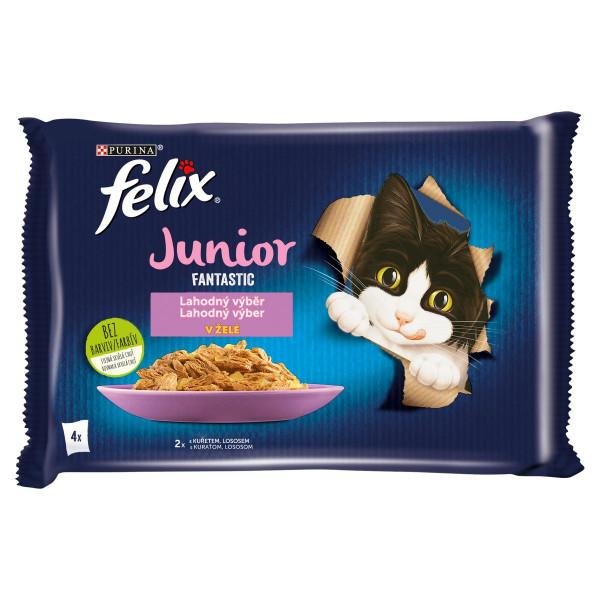 Felix Fantastic Junior kura a losos v želé 4x85 g 1