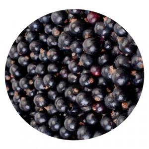 Mrazené ríbezle čierne VIKING FROST 2,5kg 58