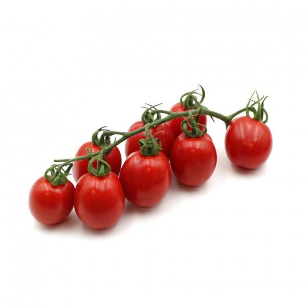 Paradajka Cherry čer. krík STRABENA Maďarsko 1